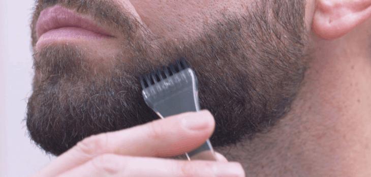 cores-barba