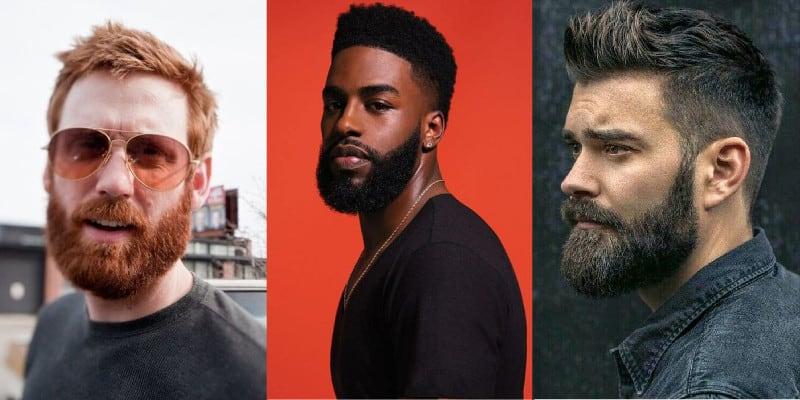 estágios da barba