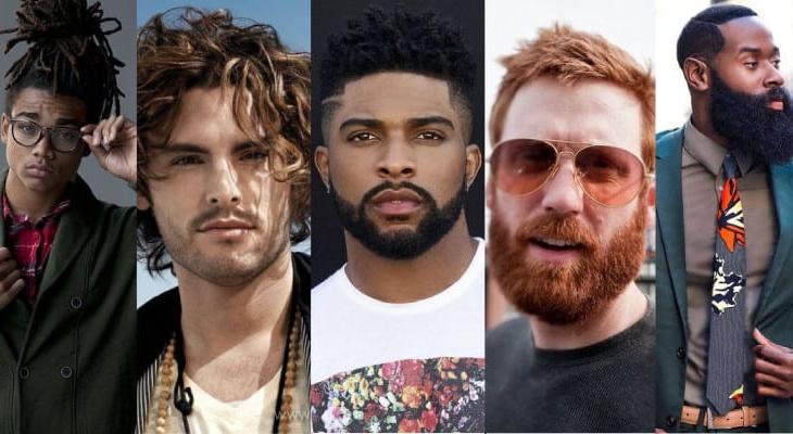 fases da barba